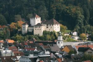 Wahlen in Feldkirch
